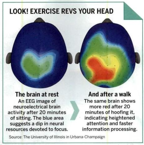 brain-on-excercise-2
