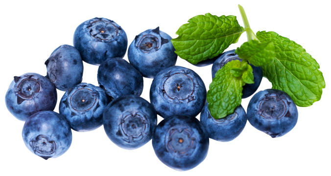 blueberries_PNG33
